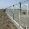 Plastic Powder Coated Welded Mesh Fence(Manufacturer)