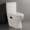 Toilet 2038
